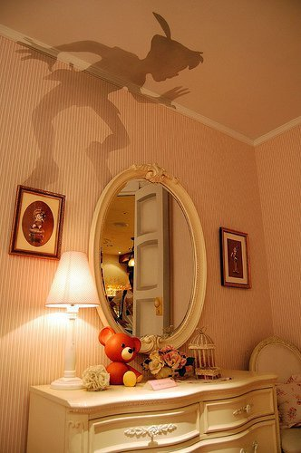 wall decal peter pan